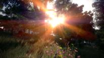 Digitale fotografie, Sonnenuntergang, Virtuell, Fotografie