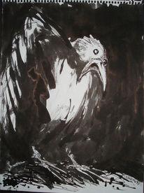 Tierleid, Unglück, Schwarzer rabe, Zeichnungen