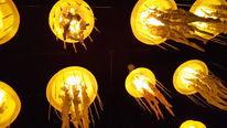Lampe, Licht, Gelb, Fotografie