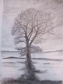 Baum, Winter, Zeichnung, Zeichnungen