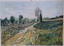 Morgen, Heide, Ölmalerei, Sommer