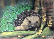 Wildlife natur igel, Tierwelt, Malerei, Portrait
