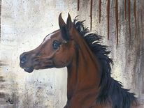 Pferde, Vollblüter, Acrylmalerei, Araber