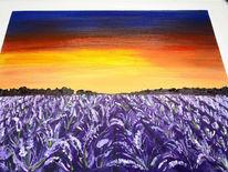 Landschaft, Blumen, Abendrot, Violett