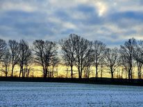 Heimat, Winter, Sonne, Pinnwand