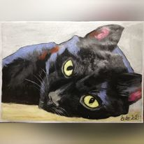 Katze, Tiere, Haustier, Pastellmalerei