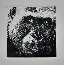 Affengesicht, Tiere, Gorilla, Linolschnitt