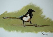 Ölmalerei, Elster, Tierwelt, Vogel