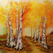 Herbstbäume, Birkenhain, Goldener oktober, Herbstimpression