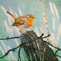 Tiere, Acrylmalerei, Rotkehlchen, Malerei