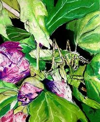Hibiskus, Mimikry, Blätter, Malerei