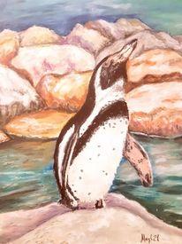Weltvogelpark walsrode, Tiere, Humboldpinguin, Pastellmalerei