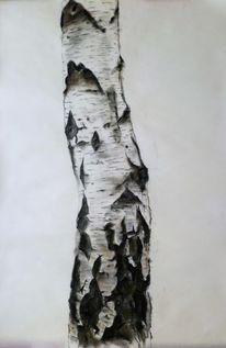 Studie, Pastellmalerei, Birkenstamm, Malerei marcel heinze