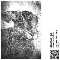 Tiere, Weiß, Schwarz, Druckgrafik