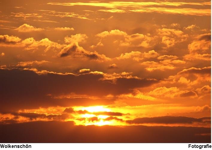 Himmel, Sonne, Licht, Orange, Wolkenschön, Linde