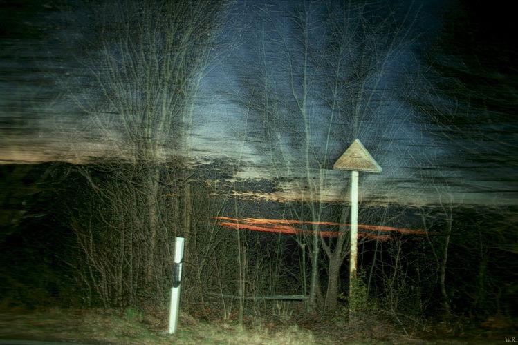 Zweig, Licht, Geschwindigkeit, Begrenzungspfosten, Himmel, Schatten