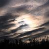 Energie, Wolken, Pflanzen, Wind