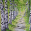 Weg, Birken, Sommer, Wald