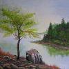 Wasser, Baum, Insel, Stein