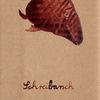 Lebenshilfe, Fisch, Wasser, Illustrationen