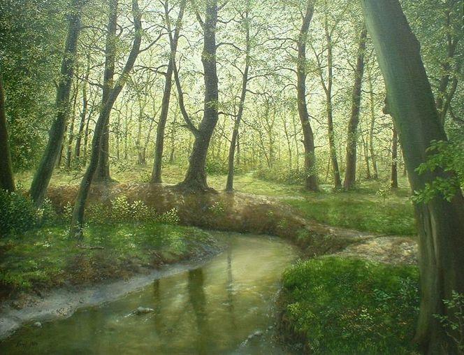 Natur, Wald, Naturalismus, Landschaft, Bachverlauf, Bach