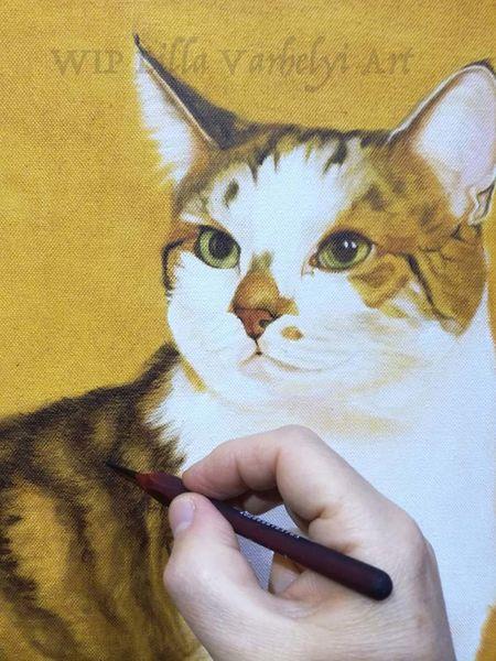 Workinprogress, Auftragsarbeit, Stufe, Wip, Tiermalerei, Katze