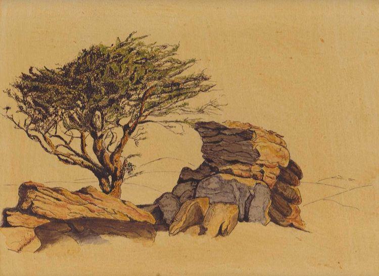 Tuschmalerei, Baum, Stein, Sonne, Landschaft, Zeichnungen