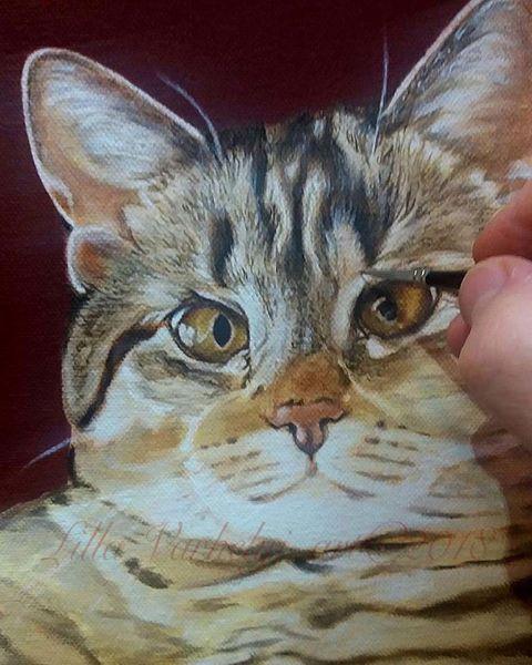Katze, Stufe, Malerei, Wip, Tiere, Silberblick
