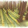 Baum, Studie, Tuschmalerei, Landschaft