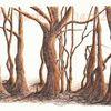 Federzeichnung, Natur, Tuschmalerei, Wald