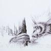 Affe, Tierwelt, Tusche, Natur