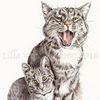 Tuschmalerei, Katze, Tierportrait, Tiere