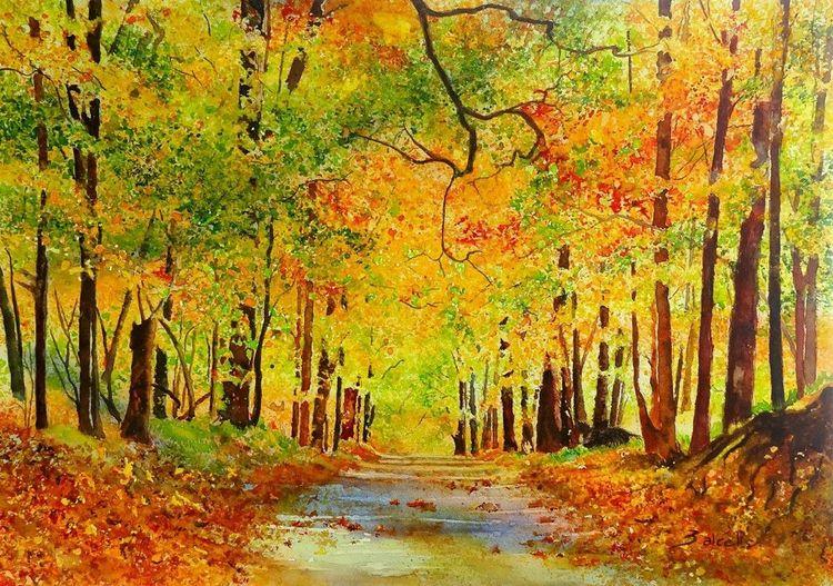 Wald, Blätter, Gold, Wildschwein, Holz, Landschaft