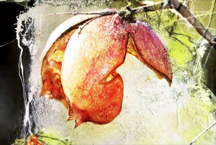 Früchte, Mischtechnik, Granatapfel