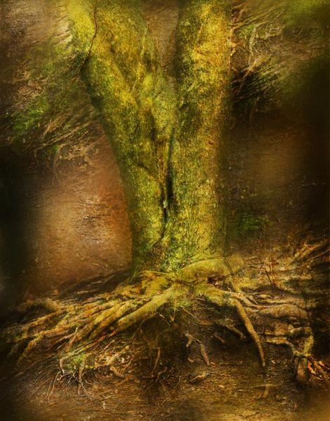Fantasie, Baum, Baumwurzel, Digitale kunst