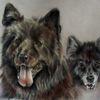 Hundeportrait, Hundezeichnung, Tierportrait, Zeichnungen