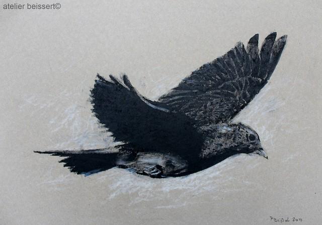 Vogel, Fliegen, Tiere, Singvogel, Feldlerche, Zeichnungen