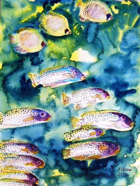 Fisch, Meer, Natur, Riff, Aquarellmalerei, Tiere