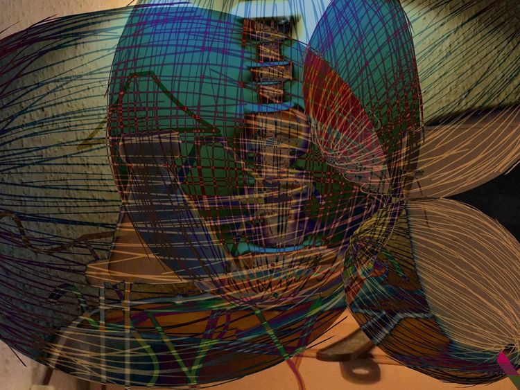 Kokosnuss, Outsider art, Digitale kunst