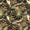 Kaktus, Digitale kunst, Seigelkaktus, Invsiv