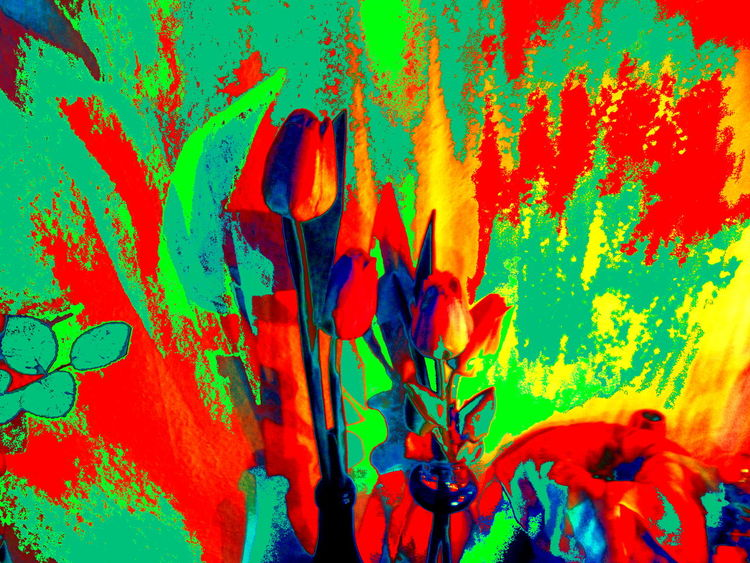 Tulpen, Digitale kunst, Surreal, Digital,