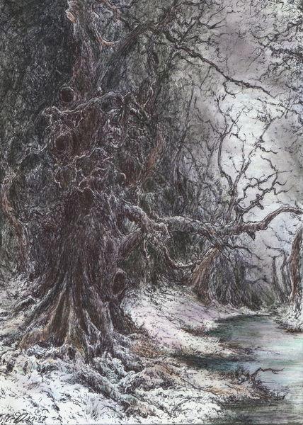 Dunkel, Wald, Düster, Holz, Winter, Baum