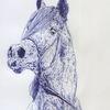 Tiere, Kopf, Anatomie, Pferde
