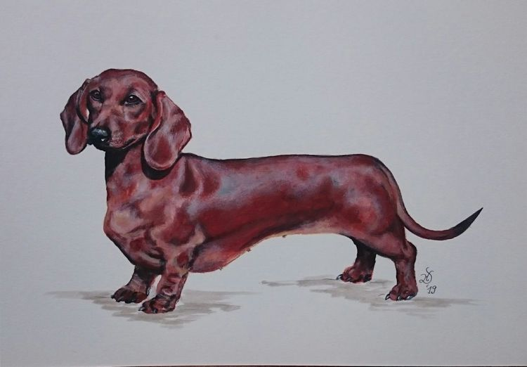 Hund, Jagdhund, Dackel, Teckel, Malerei
