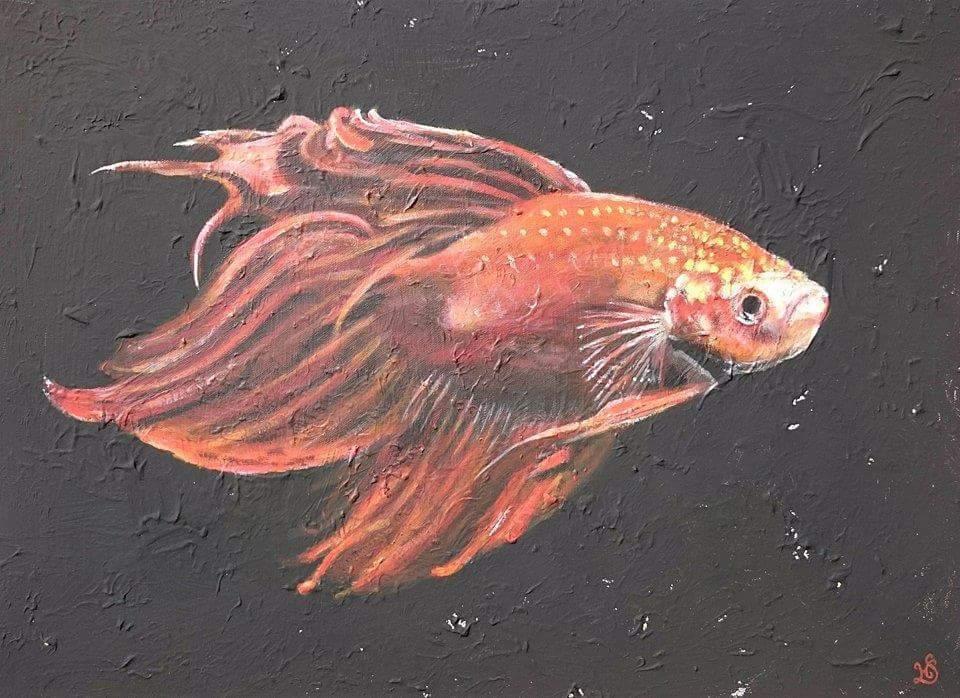 Siamesischer kampffisch bild von heike775 bei kunstnet for Siamesischer kampffisch