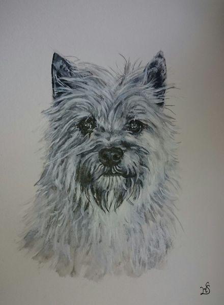 Hund, Terrier, Portrait, Malerei, Auftrag