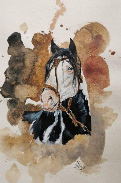 Pferde, Criollo, Pony, Aquarell