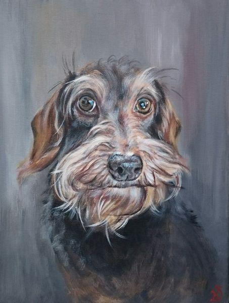 Rauhaardackel, Hund, Dackel, Malerei, Amy