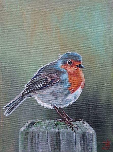 Rotkehlchen, Vogel, Malerei,