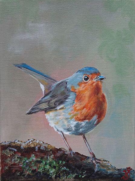 Moos, Vogel, Rotkehlchen, Malerei